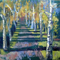 Birches and path, 70 x 70, oil, 2012
