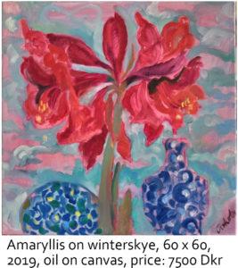 Amaryllis-on-winterskye